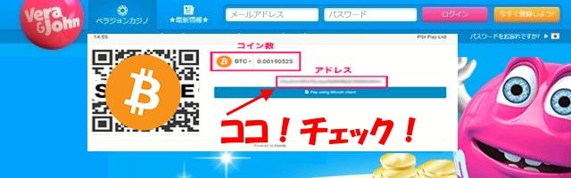 ecoPayz(エコペイズ)のビットコイン入金は毎回ビットコインアドレスを確認する