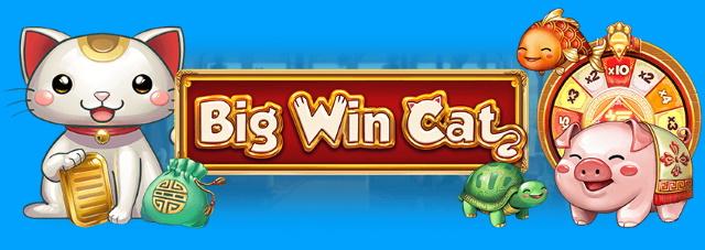 Big Win Cat(ビッグウィンキャット)